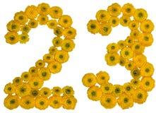 Arabski liczebnik 23, dwadzieścia trzy, od żółtych kwiatów buttercu Zdjęcie Stock