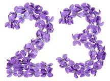 Arabski liczebnik 23, dwadzieścia trzy, od kwiatów altówka, odizolowywających Zdjęcia Royalty Free