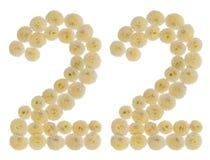 Arabski liczebnik 22, dwadzieścia dwa, od kremowych kwiatów chrysanthem Obraz Stock