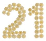 Arabski liczebnik 21, dwadzieścia jeden, od kremowych kwiatów chrysanthem Obrazy Stock