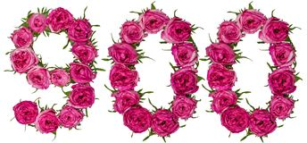 Arabski liczebnik 900, dziewiećset, od czerwonych kwiatów wzrastał, isol Zdjęcia Stock