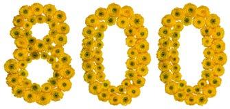 Arabski liczebnik 800, osiemset, od żółtych kwiatów masło Obraz Stock