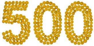 Arabski liczebnik 500, pięćset, od żółtych kwiatów tansy, Zdjęcie Stock