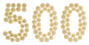 Arabski liczebnik 500, pięćset, od kremowych kwiatów chrysant Obrazy Stock