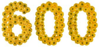 Arabski liczebnik 600, sześćset, od żółtych kwiatów buttercu Zdjęcia Royalty Free