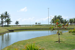 Aracaju Public Park. Aracaju is a municipality and capital of the Brazilian state of Sergipe. It is located on the coast, being cut by rivers like the Poxim and Stock Photos