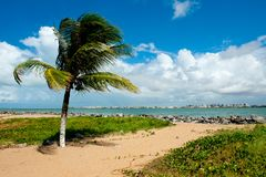 Aracaju - Sergipe. Brazil, view from the Atalaia Nova Beach Royalty Free Stock Photo