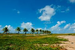 Aracaju - Sergipe. Brazil, view from the Atalaia Nova Beach Royalty Free Stock Image