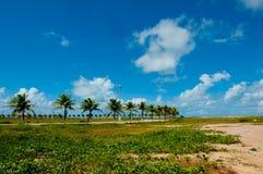 Aracaju - Sergipe Royalty Free Stock Image