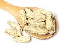 arachid Fotografia Stock
