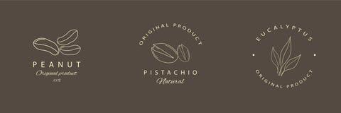 Arachid, pistacja, eukaliptusowi logotypy lub emblematy, Wektoru kreskowy logo ilustracji