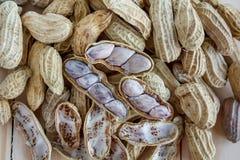 arachide Immagine Stock Libera da Diritti