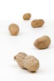 Arachides Photographie stock libre de droits
