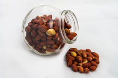 Arachides rôties Images stock