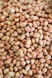Arachidi crude vendute nel mercato Immagine Stock