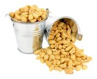 Arachidi salate in secchi miniatura Fotografia Stock