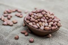 Arachis hypogaea, Raw fresh peanuts in a clay bowl on gunny background.  Stock Photography