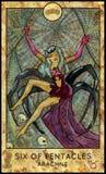 Arachné Six de pentagrammes Photos libres de droits
