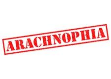 ARACHNOPHIA Stock Photos