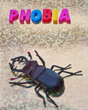 Arachnophobia. Text phobia in colorful uppercase letters with a large spider nearby, gold background Royalty Free Stock Image