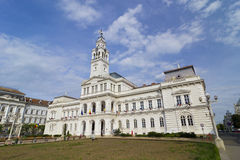 Arad- City Hall Royalty Free Stock Photography