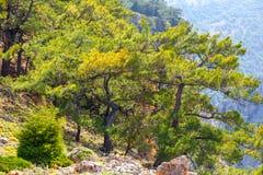 Aradena George on Crete. Greece Royalty Free Stock Photo