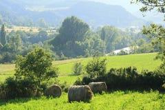 araen fields länder pyrenees River Valley Royaltyfri Bild