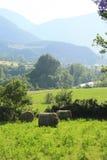 araen fields länder pyrenees River Valley Royaltyfri Fotografi
