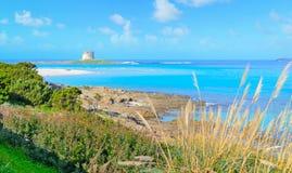 Aragonese tower in La Pelosa beach. Sardinia Royalty Free Stock Photography