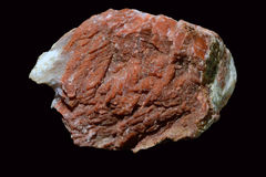Aragonite. Crystalline form of calcium carbonate Royalty Free Stock Photography