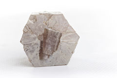 Aragonite on white background. Aragonite mineral on white background Royalty Free Stock Photography