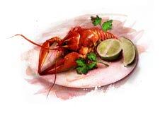 Aragosta bollita su un piatto con lo schizzo delle erbe e del limone Illustrazione di Stock