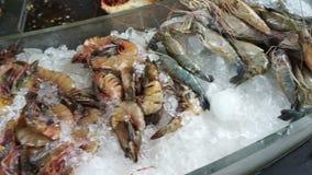 Aragosta, mantide, gamberetto, polipo e granchio dei frutti di mare di varietà su ghiaccio al mercato ittico archivi video