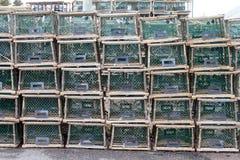 Aragosta o nasse per granchi Immagini Stock