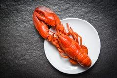 Aragosta sul piatto bianco con fondo scuro - gamberetto del gamberetto dei frutti di mare fotografia stock