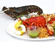 Aragosta in tensione e cucinata con le verdure su un piatto bianco Isolat fotografia stock libera da diritti