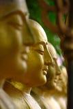 Arahant-Statuen, die in Folge stehen. Stockfoto