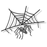 Araignée avec le Web Photo stock