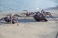 Araignée en métal Image stock