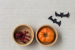 Araignée et potiron dans la cuvette en bois Images libres de droits