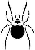 Araignée noire Photo libre de droits