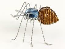 Araignée percée en vrille Photo libre de droits