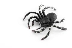 Araignée en plastique noire et blanche Images stock