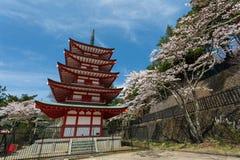 Arakura Sengen寺庙的Chureito塔 免版税库存照片