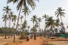 Arambol, Índia - 25 de fevereiro de 2016: Estrada através das palmas próximo Fotografia de Stock