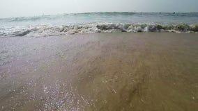 Arambol beach, Goa. View to Arambol beach, Goa India. Slow motion stock footage