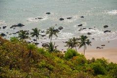 Arambol beach. Palm trees. Sea. Goa state, India. Beauty Arambol beach landscape. Panorama, top view. Goa state India Stock Photography