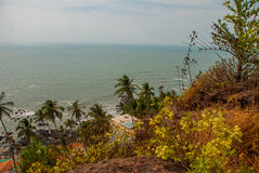 Arambol beach. Palm trees. Sea. Goa state, India. Beauty Arambol beach landscape. Panorama, top view. Goa state India Stock Photo