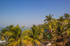 Arambol beach top view, palms, beach and Arabian sea, Goa, India Royalty Free Stock Image