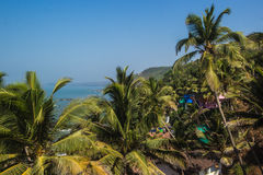 Arambol beach top view, palms, beach and Arabian sea, Goa, India Royalty Free Stock Images
